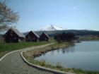観_花立牧場公園