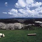 観_望海の丘