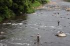 観_渓流釣り 鮎つり