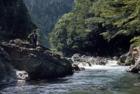 観_渓流釣り 子吉川上流